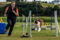 Dog Trials 2017-13