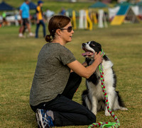 Dog Trials 2017-11